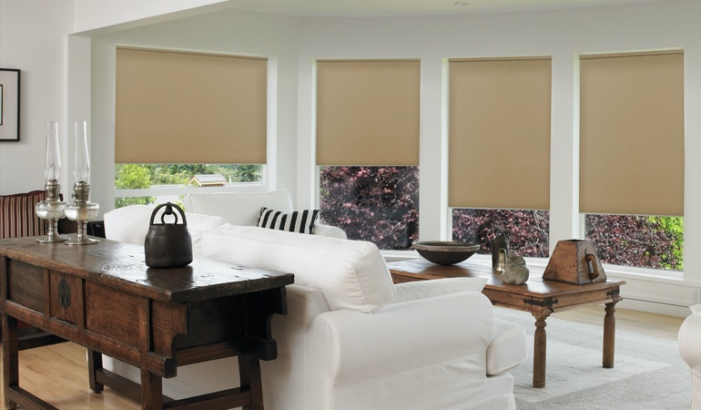 Roller shades in a family room